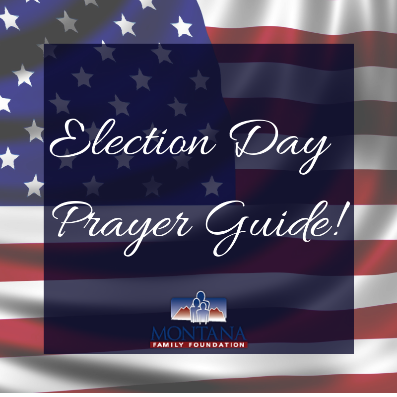 14 Day Election Prayer Guide